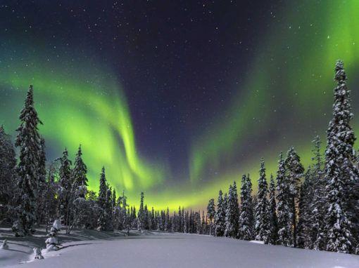 Viaje Laponia Auroras Saariselka