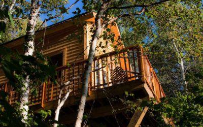 alojamiento exclusivo de cabaña en el arbol