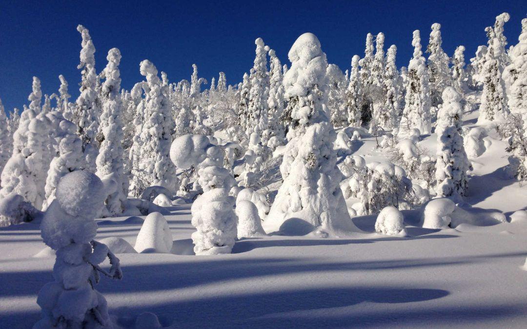 Viaje Laponia Ruka