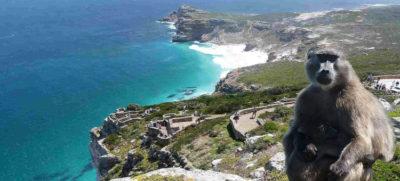 viaje sudafrica isla de robben