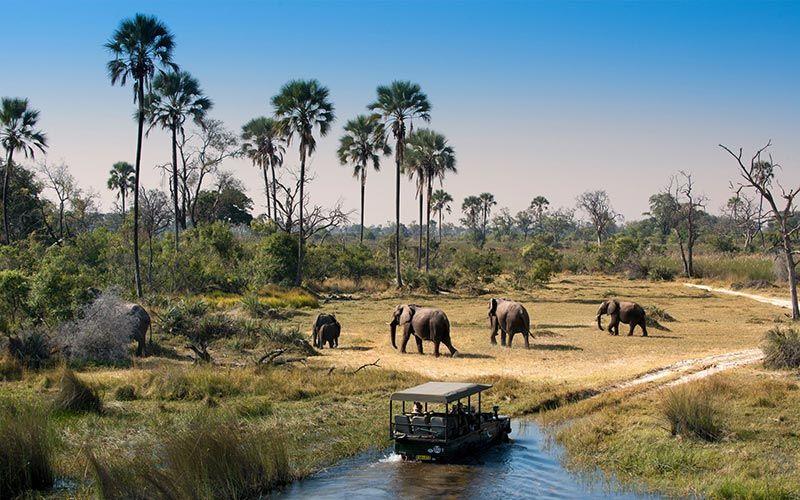 contraste-viaje-namibia-botswana-zimbabwe