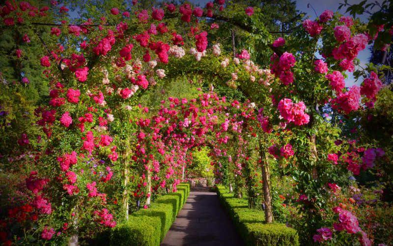jardines botanicos vancouver