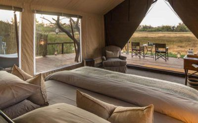 viajes a botswana moremi safari