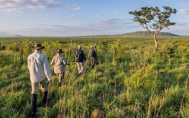 safari a pie en kruger sudafrica