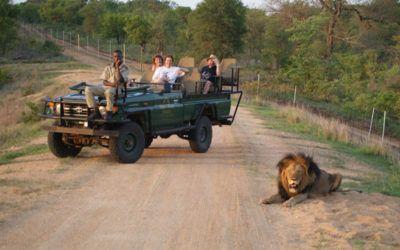 viajes a sudafrica kruger