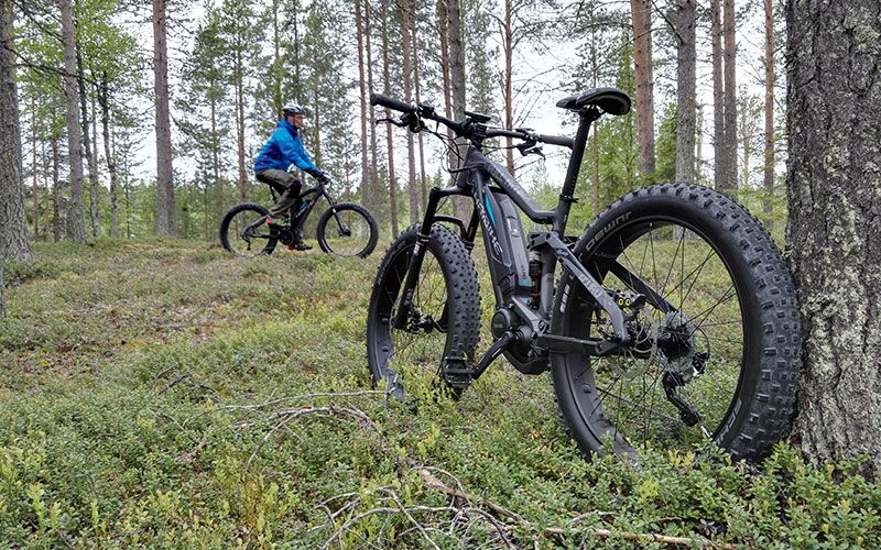 recorrer-laponia-en-bicicleta-fatbike